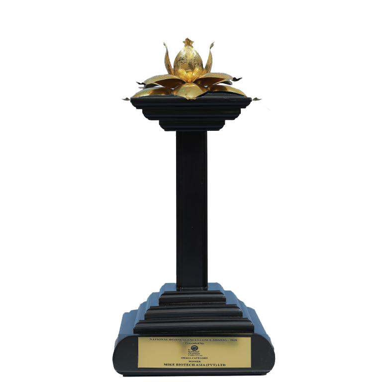 National-Business-Excellence-Award-2018-Winner-in-Small-Category-1.png