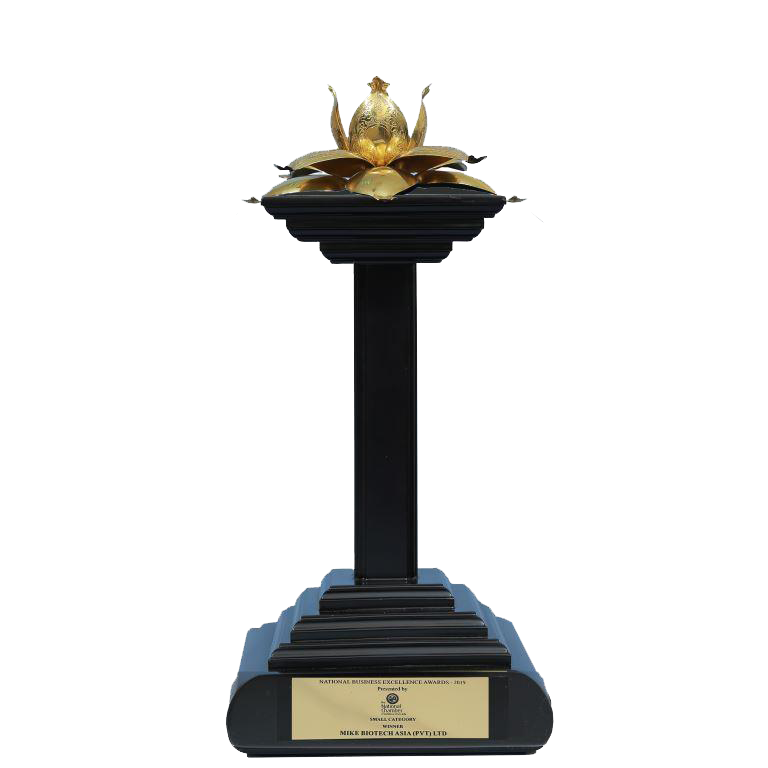 National-Business-Excellence-Award-2019-Winner-in-Small-Category-1.png